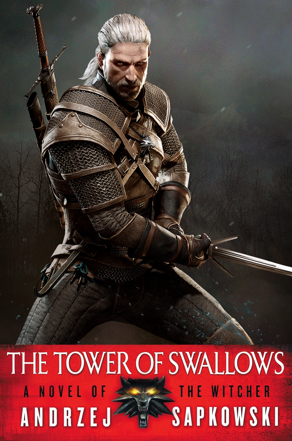 all the witcher books and the stories behind them gamers