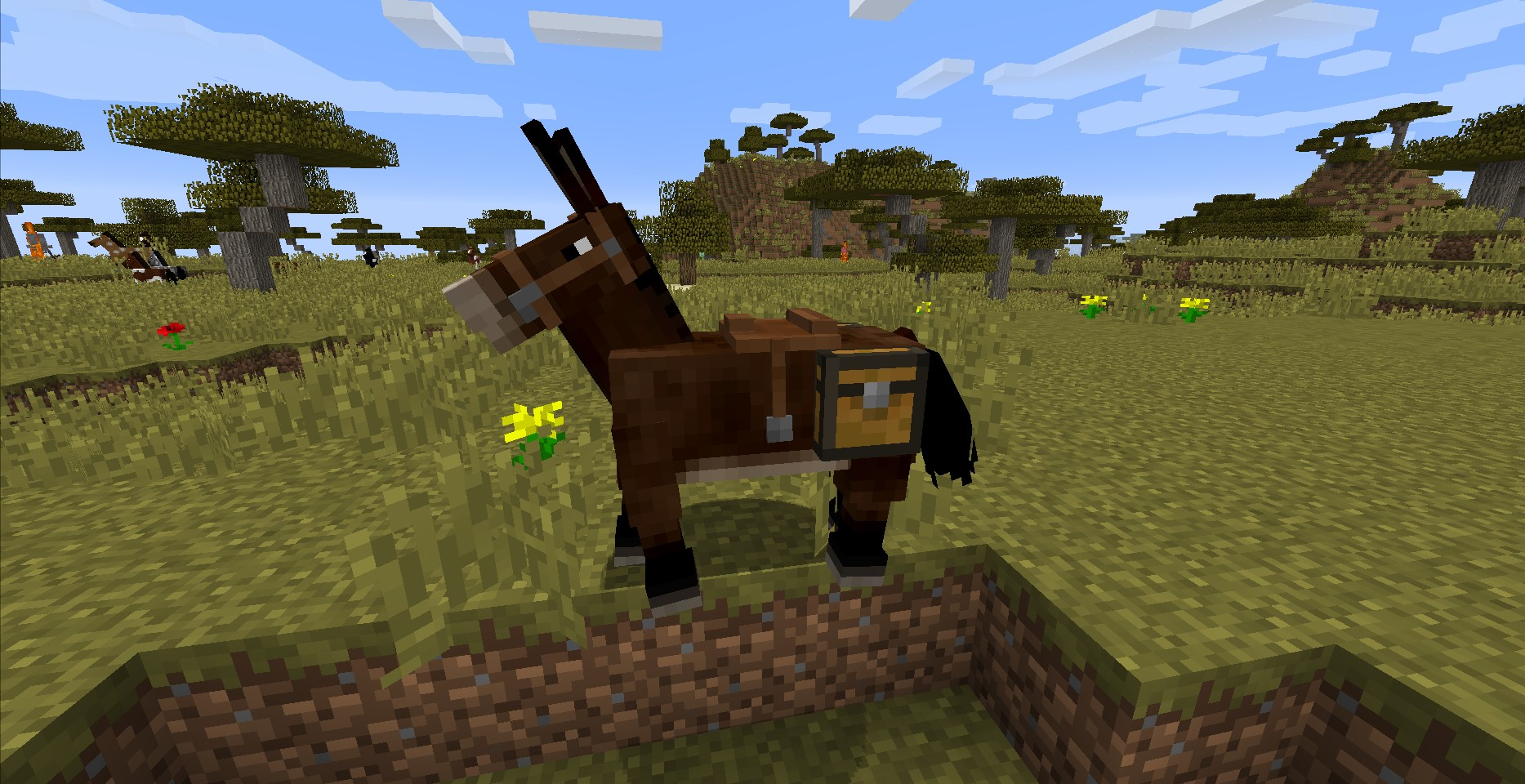 Top 10 Minecraft Best Horse Gamers Decide