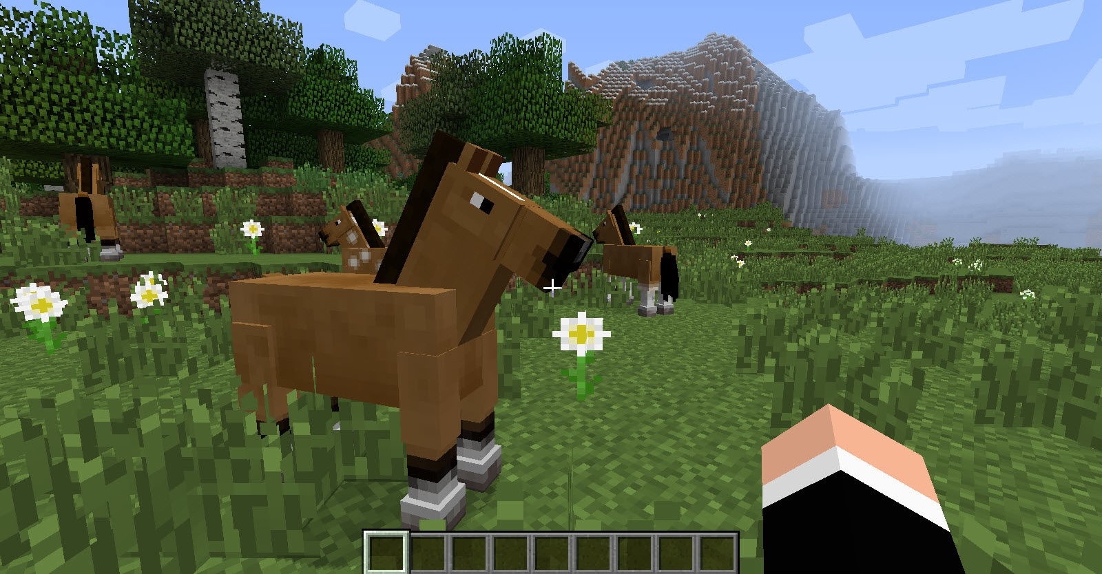 Top 10 Minecraft Best Horse | GAMERS DECIDE