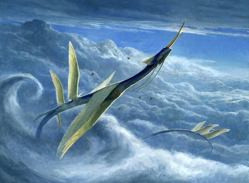 Yorion, Sky Nomad image