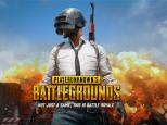 The popular game PlayerUnknown's Battlegrounds has sold millions of copies.