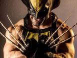Wolverine Cosplays