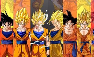 All Goku Forms