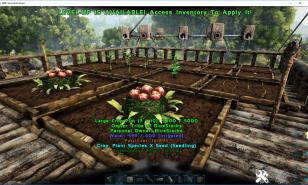 Ark Survival Evolved Best Crops