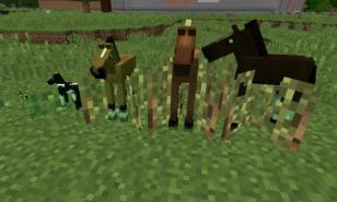 Minecraft, mod