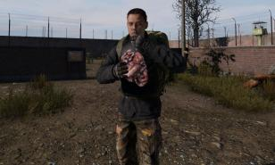 DayZ How To Cure Sickness