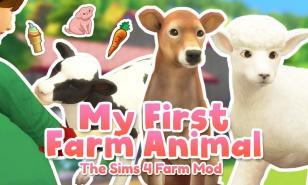 Sims 4 Best Pet Mods