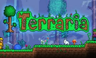 Terraria Best Accessories