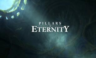 Pillars of Eternity Review and Gameplay