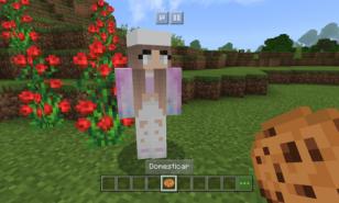 Minecraft Best NPC Mods