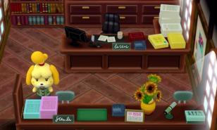 Animal Crossing New Leaf Best Ordinance