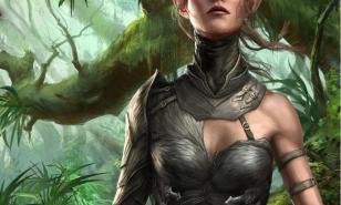 DOS2 Best Builds for Sebille , Divinity: Original Sin 2 Best Builds for Sebille