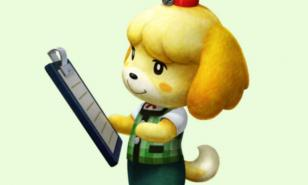 Animal Crossing New Leaf best ordinances