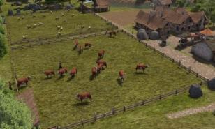 Banished Best Pasture Sizes