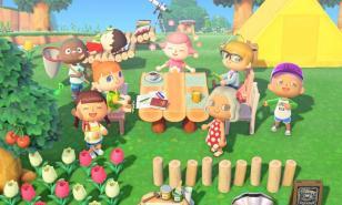 Animal Crossing: New Horizons Beginner'Guide