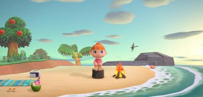 Animal Crossing New Horizons Best Islands