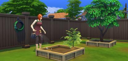 Sim watering plant