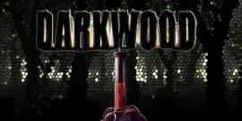 darkwood, RPGs, best horror games 2017