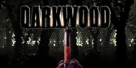 darkwood, RPGs, best horror games 2017