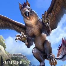 Gryphons are large, half-lion, half-eagle creatures which appear in the Summerset Isles.