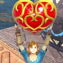 Link holds up the gift of stamina