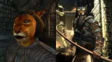 Side by side comparison of Oblivion's Khajiits and Skyrim's Khajiits.