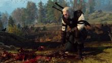 Geralt is an observer to a brutal conflict, and whether he takes a side is up to you.