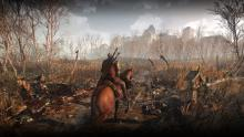 An all too common sight in The Witcher 3.