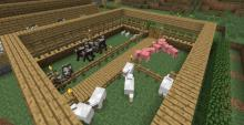 A farm with common mobs
