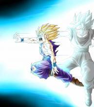 Father son Kamehameha Goku Gohan