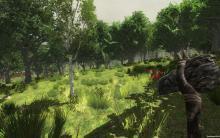 7 Days to Die forest