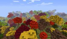 Minecraft-fall-forest-biome