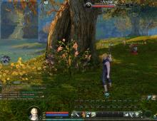 a screenshot from Aion