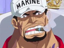 Akainu will use any means to achieve absolute justice.