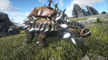 The Ankylosaurus can take very little damage when in combat, making them useful in a fight