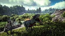 Dinosaurs roam the island, and players can tame them or defeat them