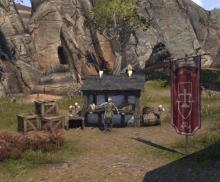Guild Traders are vendors that allow the public to purchase from Guilds stores