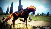 You'll find a reliable horse to be an important companion in BDO.