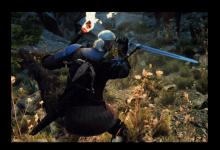Geralt can fight and still have light thanks to the Better Torches mod.