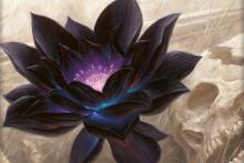 The most valuable flower in all of MTG