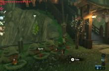 Players can find apples and other fruits all throughout Hyrule