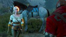 Ciri has met many people while in hiding.