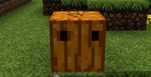 With the Pumpkin Carving Mod, you can carve your in-game pumpkins to create your very own Jack-o-Lantern!