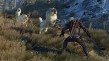 Ground-breaking graphics and special effects makes The Witcher 3 - Wild Hunt one of the major releases of the year