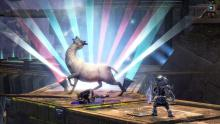 This has nothing (directly) to do with Felicia herself, but I feel like she would approve of this llama in Guild Wars 2.