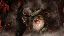 Battling strange beasts in Dark Souls 2