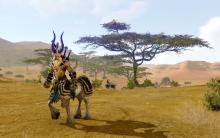 Battle enemies in the scenic environment of Archeage.