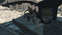 One of Fallout 4's many companions fighting alongside you.