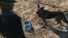 Companions in Fallout 4 can accompany you on your journey.