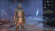 The Elder Scrolls Online Classes